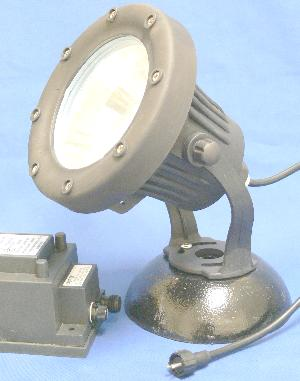 10W submersible pond light